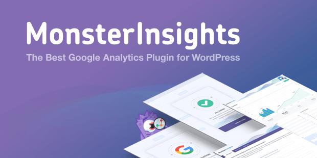 monster insights plugin